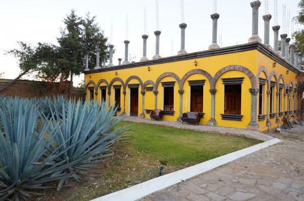 Tour Raíces Tequila